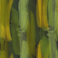 bold abstract modern_bonus3